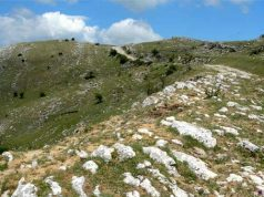 Praterie aride sul Monte Guadagnolo, in provincia di Roma