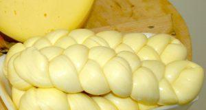 Una treccia di pasta filata; è evidente la marcata colorazione gialla dovuta alla presenza di beta carotene (foto Michele Pizzillo)