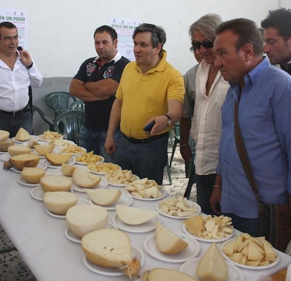 Un banco d'assaggio di formaggi da animali al pascolo (foto Michele Pizzillo)