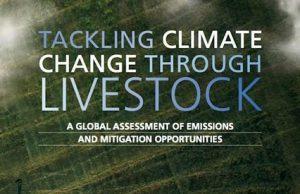 La copertina del recente studio pubblicato dalla Fao sulla riduzione dell'impatto ambientale da parte degli allevamenti