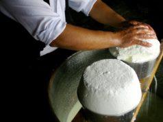 La messa in forma del Fiore Sardo dei pastori, Presìdio Slow Food