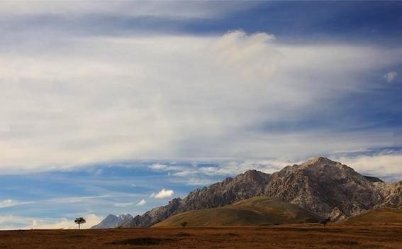 Tipica prateria Nel Parco del Gran Sasso e Monti della Laga - foto pagina Facebook del Progetto Life Praterie®