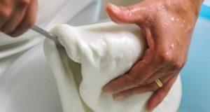 La filatura della mozzarella ovina prodotta dal caseificio sardo Pab'è is Tèllasa