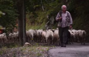 Una scena di Bianca e gli altri, corto di Roberto Giomi in concorso al Trento Film Festival