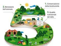 Il Latte Sostenibile di Mukki Latte rappresentato graficamente nei suoi cinque punti cruciali