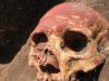 Cranio appartenente ad individuo Jamna della regione di Samara, colorato con ocra rossa - foto di Natalia Shishlina - Natural History Museum of Denmark©