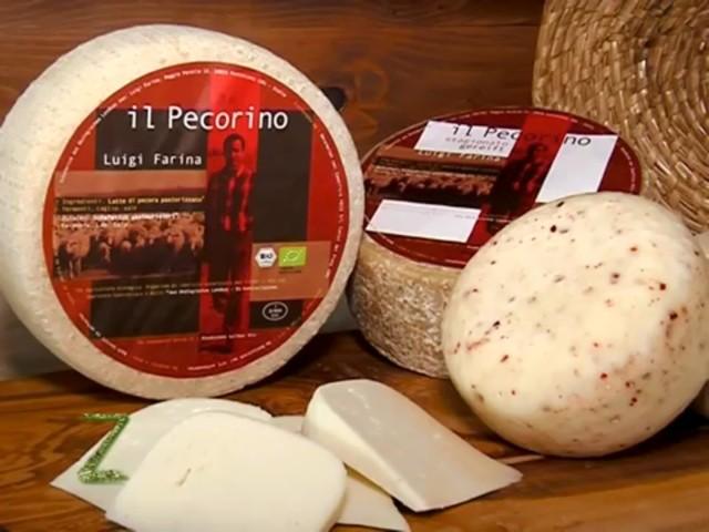 Alcuni dei formaggi di Luigi Farina ripresi nel corso della trasmissione Zonattiva di Telemaremma Tv9 - L'intervista è linkata in calce a questo articolo