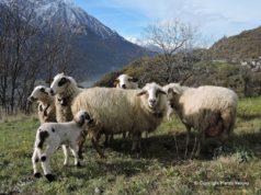 La foto di copertina del nuovo blog di Marzia Verona, che ben sintetizza i suoi contenuti