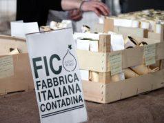 foto tratta dal sito web di FICo Eataly World